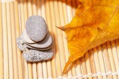 liści jesienią kamienie Obrazy Stock