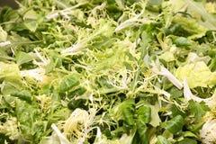 liści sałaty wegetarianin tło Fotografia Royalty Free