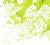 liści tła