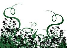 liści tła Zdjęcia Stock