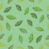 Liścia Bezszwowy wzór z tłem Fotografia Stock