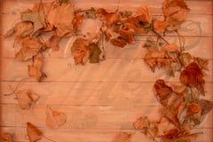 Liścia ramowy stary szyldowy tło z przestrzenią dla kopii obrazy stock