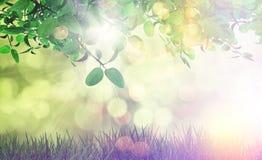 Liście i trawa z rocznika skutkiem Zdjęcie Royalty Free
