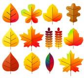 Liście jesień, set ikony ilustracja wektor