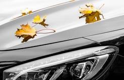 Liście klonowi na luksusowym samochodzie przy jesienią Obrazy Royalty Free