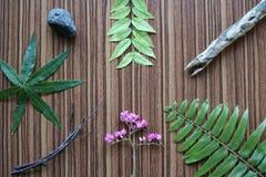 Liście, kwiaty, drewno, kamień Obrazy Stock