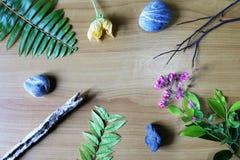 Liście, kwiaty, drewno, kamień Obrazy Royalty Free