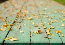 Liście na zielonego stołu zamazanym tle Zdjęcia Royalty Free