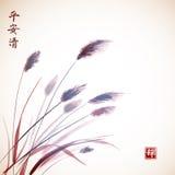 Liście rysujący z atramentem trawy ręka Zdjęcia Royalty Free