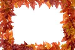 liście spadków obrazy stock