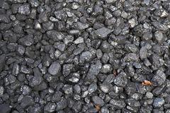 liście węgla Zdjęcie Stock