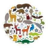 Li ары гиацинта ягуара енота с гривой волка дельфина обезьяны ламантина горжетки броненосца уплотнения летучей мыши лама муравьед иллюстрация штока