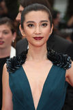 Li BingBing Royalty Free Stock Photography