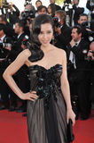 Li Bingbing Stock Photography