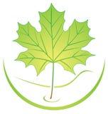 liści logo Fotografia Stock