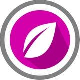 Liścia szablon i logo Zdjęcie Royalty Free