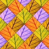 Liścia wzór Zdjęcia Royalty Free