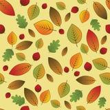 Liścia wzór Zdjęcie Stock