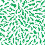 Liścia wzór Obraz Stock