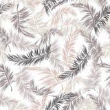 Liście drzewko palmowe bezszwowy wzór Fotografia Royalty Free