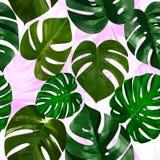 Liście drzewko palmowe bezszwowy wzór Zdjęcia Stock