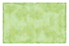 liście shamrock rocznego papieru Fotografia Stock
