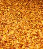 liście spadków