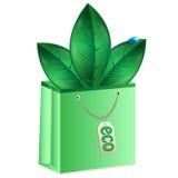 Liście zielony kolor Fotografia Stock