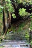 A Li Mountain Path Royalty Free Stock Image