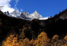 Li okręg administracyjny, Sichuan Bipenggou Obrazy Stock
