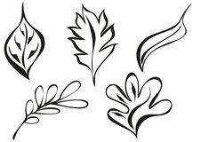 liść ornamentu wzory Zdjęcie Stock