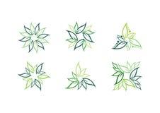Liść, roślina, logo, ekologia, zieleń, liście, natura symbolu ikona ustawiająca wektorowi projekty royalty ilustracja