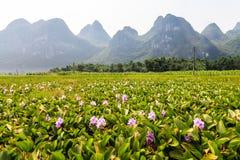 Li rzeki krajobraz w chiny południowi Obraz Royalty Free