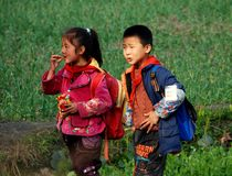 Li An Village, China: Two School Children. A little boy and girl eating a package of snacks walking through a field of garlic carrying their back packs after a Stock Photos