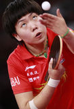 LI Xiaoxia (CHN) Стоковое фото RF