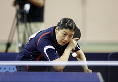 Li Xue (FRA) Stock Photo