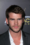 Liam Hemsworth Royalty Free Stock Photography