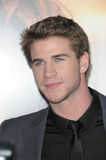 Liam Hemsworth Royalty Free Stock Photos
