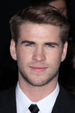 Liam Hemsworth Royalty Free Stock Photo