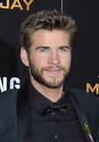Liam Hemsworth Stock Images