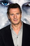Liam Neeson foto de archivo