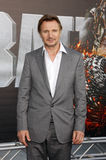Liam Neeson Royalty Free Stock Images