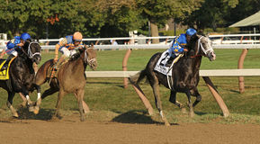 Liam's Map Wins The Woodward Stakes Stock Photo