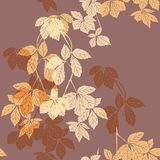 Liana floral pattern on the brown. Yellow and cream liana floral pattern on the brown background for bed linen, curtains, decorative pillows, other home textile royalty free illustration