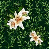 Liana spreads green leaves creeper and lily flower seamless pattern background. Liana spreads green leaves creeper and lily flower seamless pattern on dark royalty free illustration