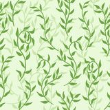 Liana spreads green leaves creeper seamless pattern background vector. Liana spreads green lime leaves creeper seamless pattern on dark background vector royalty free illustration