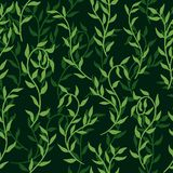Liana spreads green leaves creeper seamless pattern background vector. Liana spreads green leaves creeper seamless pattern on dark background vector illustration vector illustration
