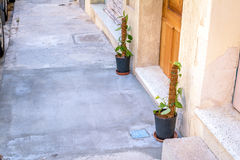 Liane dehors, Malte Photos stock
