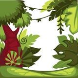 Liane della foresta pluviale o della giungla ed alberi dei cespugli e natura selvaggia delle palme illustrazione di stock
