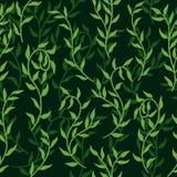 Liane verbreitet Muster-Hintergrundvektor der grünen Blattkriechpflanze nahtlosen vektor abbildung